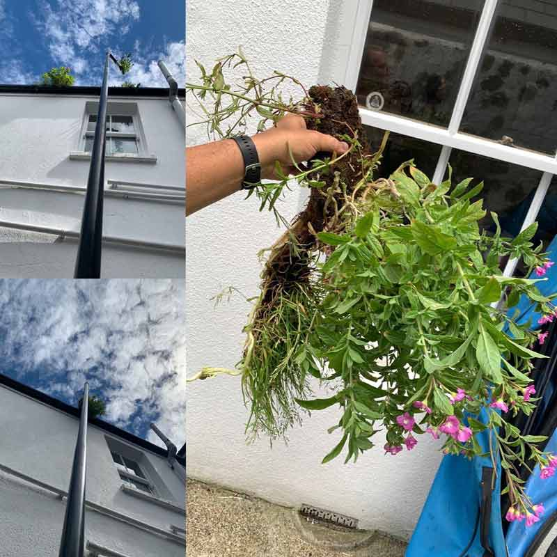 clean and sweep gutter cleaning Clean and sweep - Chimney sweep based in Brighton/Saltdean